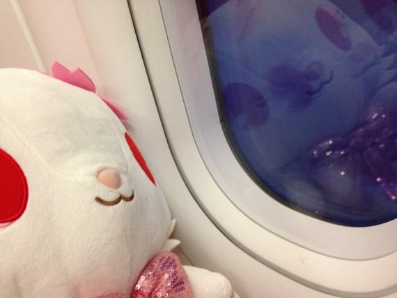 機内でのルビーちゃん