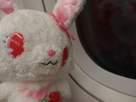 ルビーちゃんと飛行機の窓