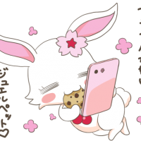 マジカルかわいいジュエルペット〜!