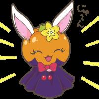 かぼちゃルビー