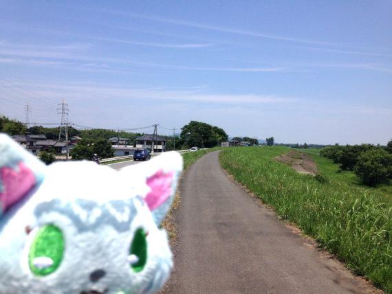 渡良瀬川沿いの道とミルキィちゃん