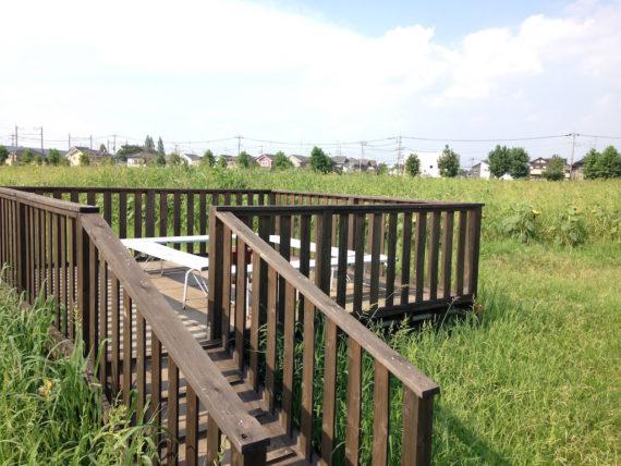 ひまわり畑の中央にある休憩所