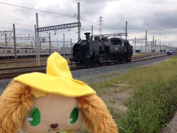 プレーズと蒸気機関車