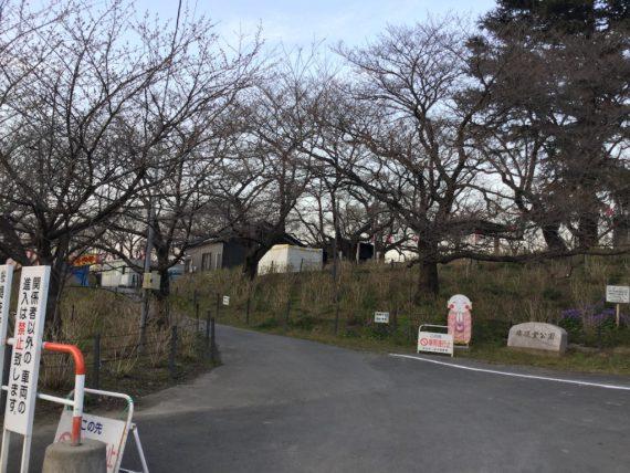 権現堂公園の入り口