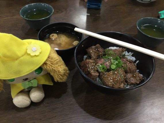 牛リブロース丼とプレーズ