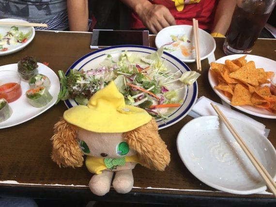 サラダと生春巻きとチップス