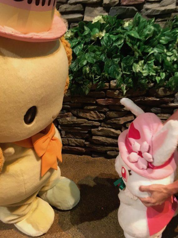 シフォンちゃんがルビーちゃんに丁寧にご挨拶