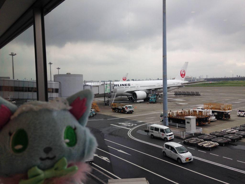 雨模様の羽田空港
