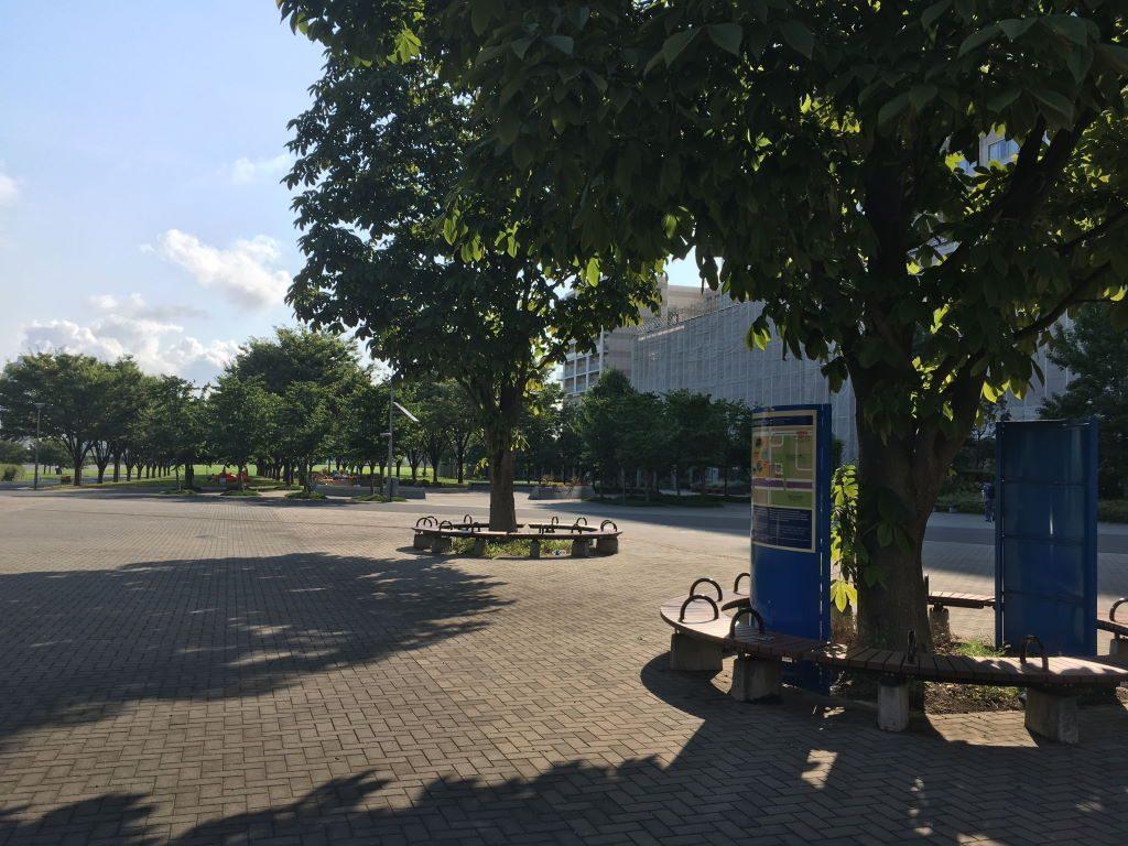 コミケ前の防災公園の夏景色