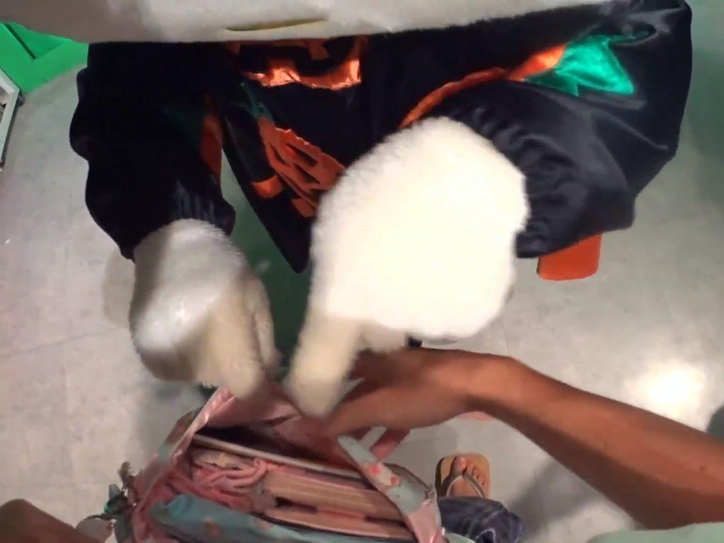 バッグの中を探るキティちゃん