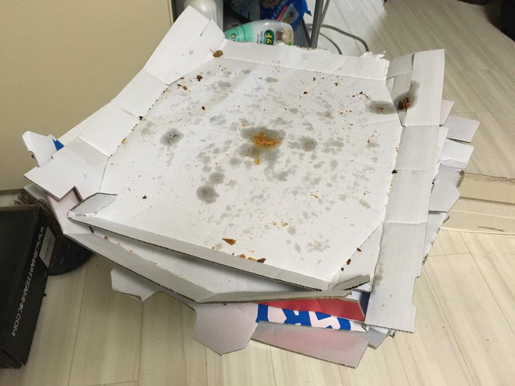 食べ終わって空っぽになったドミノピザの箱