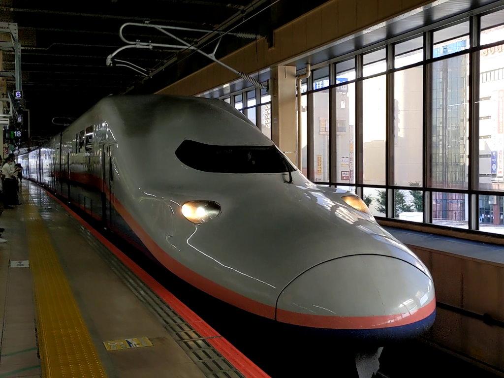 大宮駅に到着するMaxとき303号