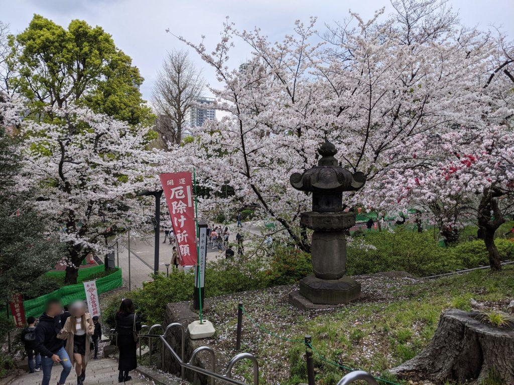 ビルと桜と坂道