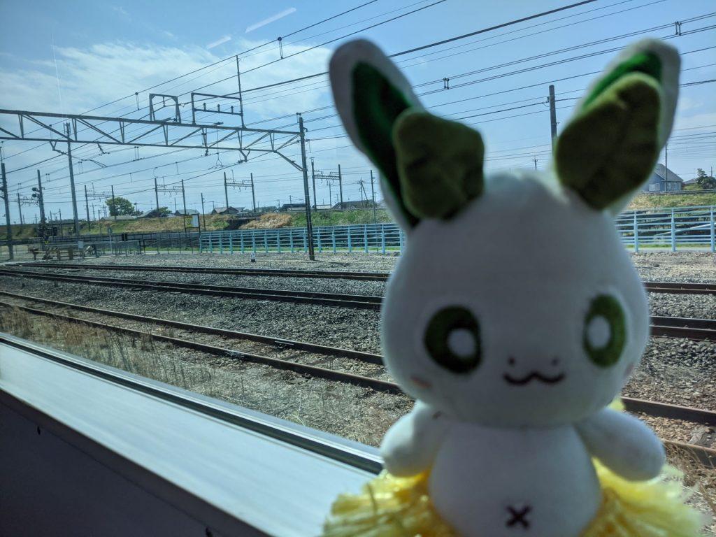 栗橋駅と東鷲宮駅の間にいる電車に乗るカッシーくん