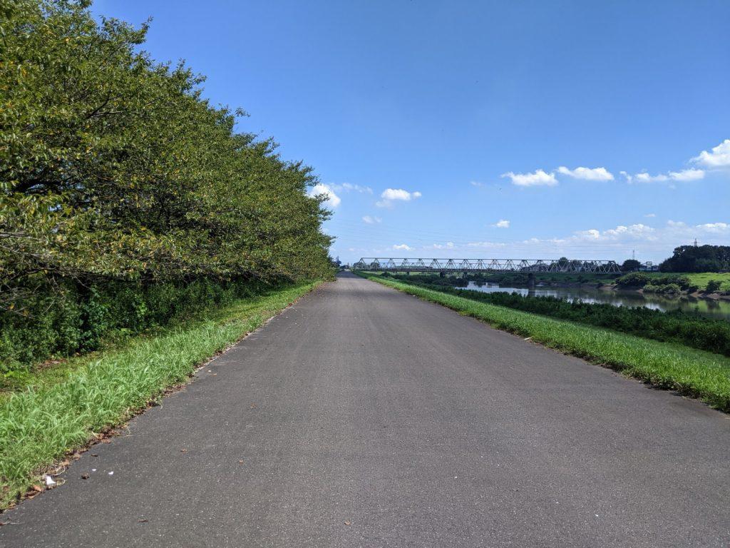 帰り道の渡良瀬川のサイクリングロード